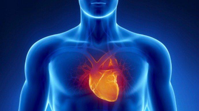 Doença arterial coronariana: depósito de gordura nas paredes arteriais dificulta a passagem de sangue ao coração