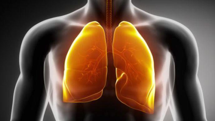 Atualmente, o câncer de pulmão é considerado uma das principais causas de morte evitáveis no mundo. Sua principal causa é o tabagismo e a alta letalidade da doença é atribuída ao diagnóstico tardio na maioria dos casos