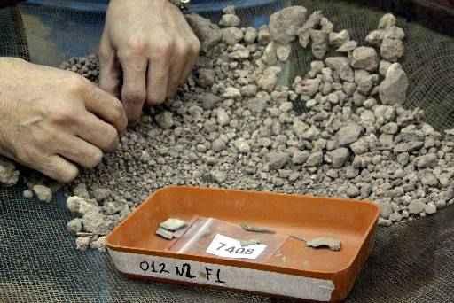 Triagem do material encontrado na Lapa do Santo é feito cuidadosamente (foto: Roberto Rocha/Esp. EM 30/6/12)