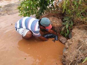 Pescador tenta salvar peixes que estão agonizando (Foto: Tiago Lopes / Intertv dos vales)