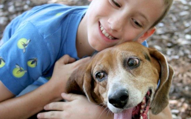 Possuir um cão no primeiro ano de vida diminui risco de crianças terem asma, segundo pesquisadores suecos