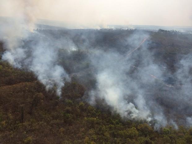 Incêndio atinge Parque da Lapa Grande desde a sexta-feira (6) (Foto: Corpaer / Polícia Militar)