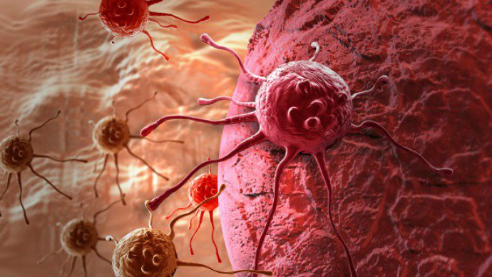 Câncer: apenas entre 10% e 30% dos tumores seriam causados por mutações celulares inevitáveis. Os cânceres mais comuns são desencadeados por fatores externos e, portanto, poderiam ser evitados com mudanças de comportamento e no ambiente