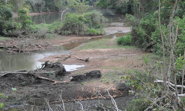 Desde 2014, Viçosa vem enfrentando dificuldades com o baixo nível dos reservatórios da cidade (Foto: Paulo Filgueiras/EM/D.A PRESS)