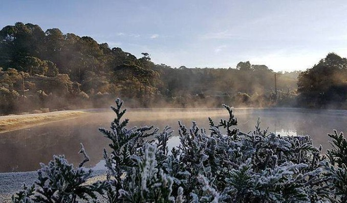 Geada mudou a paisagem no distrito de Monte Verde (Foto: Divulgação/Guia Monte Verde)