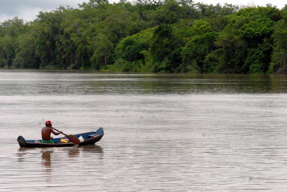 AmazôniaMarcello Casal Jr/Arquivo/Agência Brasil