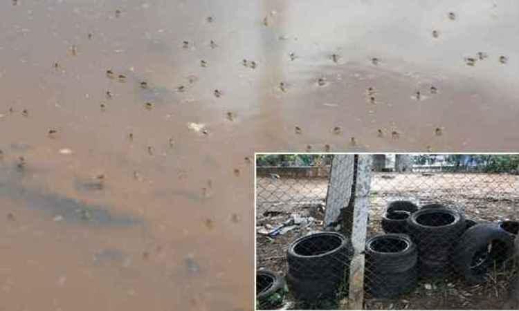 Período chuvoso é preocupante na proliferação do mosquito Aedes aegypti, assim como lixo depositado de forma indevida (foto: Gladyston Rodrigues/EM/DA Press)