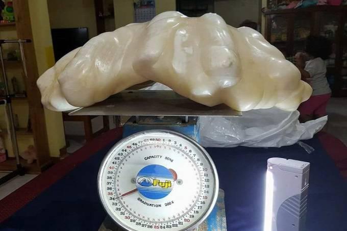 A pérola encontrada nas Filipinas pesa 34 quilos e pode ser a maior do mundo (Divulgação)