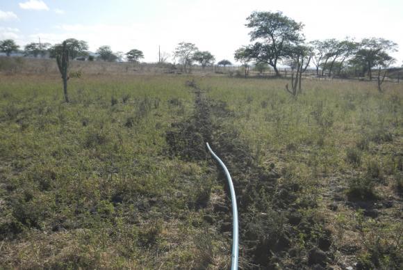 Plantação de maconha contava com sistema de irrigação com encanamento de dois quilômetros para captar água    Divulgação Polícia Federal