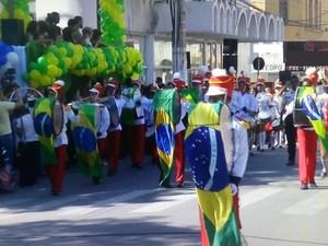 Desfile contou com a participação de várias pessoas (Foto: Reprodução/Inter TV dos Vales)